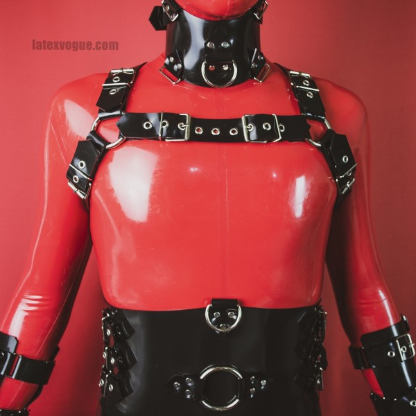 Diagram Heavy Rubber Chest Harness